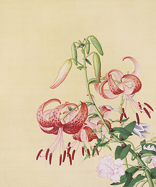 Lilies and peonies by Guiseppe Castiglione (1688-1766) Wikimedia Commons